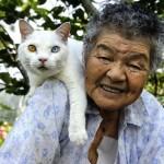 babcia i kot