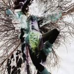 drzewna Natalia
