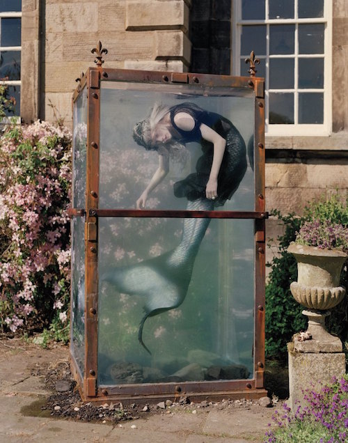 tim walker_siren5