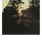 polaroidy Tarkowskiego